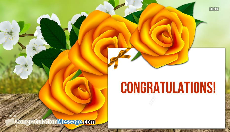 Congratulations With Rose Images, Pictures