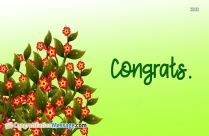 Congrats Wishes