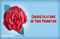 Congratulation Message For Boss Promotion