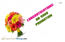 Hearty Congratulations On Promotion