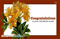 Congratulations Message