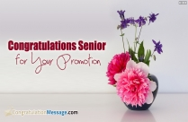 Congratulations On Promotion To Senior